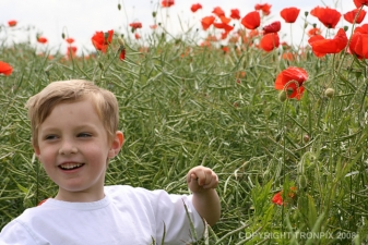 Max in Poppies